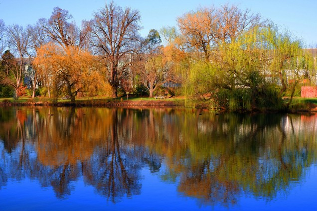 Reflections - Tracey Christina (Highly Commended)