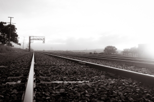 Foggy Train Tracks - Nishan Wanigasekara (Commended)