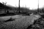 Jerusalem Creek - Karen Robinson (Commended)