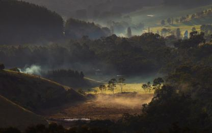 Misty Morning - Elizabeth Kociska (Commended)
